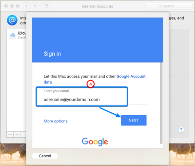 put-your-google-apps-email-address